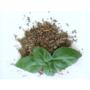 Kép 2/2 - Lakshmi bazsalikom morzsolt 20g levellel